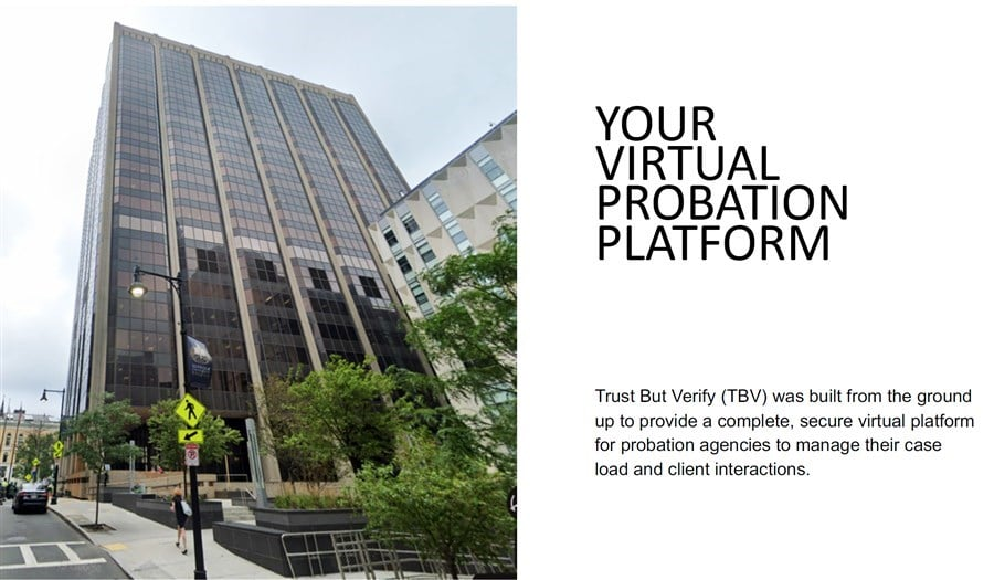 Virtual Probation cover image